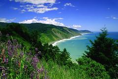 More Lost Coast (mrwsierra) Tags: ocean coast bravo shoreline shore lostcoast