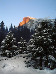 Alpenglow - Half Dome, Yosemite in January (ChrissyJ) Tags: california mountain snow earth yosemite halfdome alpenglow 3waychallenge chrissyj lpwinter lpsnow