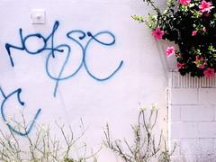 White Noise (carolinecohenour) Tags: california ca pink blue urban usa flower brick green wall america word graffiti la losangeles los weeds unitedstates angeles calif urbannature noise fairfaxave