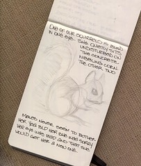 Squirrelly fast 2 of 3 (renmeleon) Tags: moleskine nature squirrel journal ria renmeleon renfolio