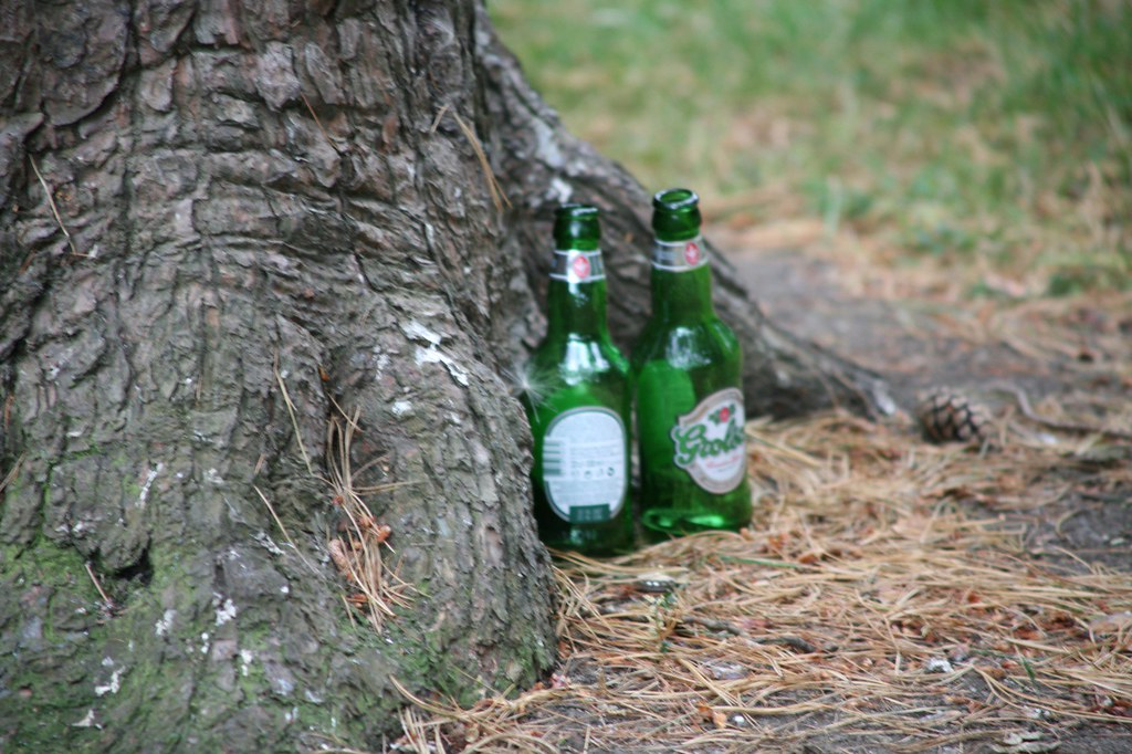 BEER BOTTLES IN THE BOTANIC GARDENS