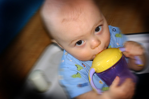 learning the sippy