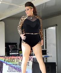 Pamela anderson boobs in bikini