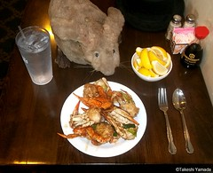 Dr. Takeshi Yamada and Seara (Coney Island Sea Rabbit) at the Seaport Chinese Buffet Restaurant in Sheepshead Bay in Brooklyn, NY on September 8, 2015. Blue crab with sweet sauce. 20150908 100_9926=0010C (searabbits23) Tags: ny newyork sexy celebrity art hat fashion animal brooklyn painting sushi asian coneyisland japanese star restaurant tv google king artist dragon god manhattan wildlife famous gothic goth chinese performance pop taxidermy cnn tuxedo bikini tophat unitednations playboy entertainer samurai genius buffet mermaid amc johnnydepp mardigras salvadordali unicorn billclinton billgates aol vangogh curiosities sideshow jeffkoons globalwarming takashimurakami pablopicasso steampunk damienhirst cryptozoology freakshow barackobama seara immortalized takeshiyamada museumofworldwonders roguetaxidermy searabbit ladygaga climategate minnesotaassociationofroguetaxidermists