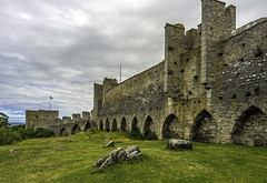 Visby city walls (Tony Tomlin) Tags: sweden medieval walls gotland visby walledcity