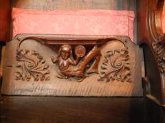 DSCN1909 (Richard Paul Carey) Tags: cathedral medieval carlisle misericords carvedwoodwork