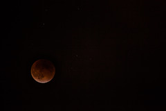 Last Blood Moon (PhotosWithErwin) Tags: california moon beach eclipse blood long nightscape sigma nighttime canon5d lunar 50500mm canon5dmkii