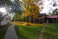 A beautiful fall scene