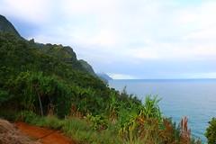 IMG_2911 (s@ndm@n) Tags: falls kauai hanakapiai 2015