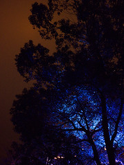 2015-P237 (TridentPlus) Tags: winter illumination nightscene