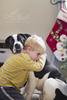 Sweet huggles (grilljam) Tags: seamus 4yrs bitzer 1yr puppy bulldoglabmix december2016 winter bythetree havingahug buddies