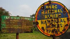 DSC06185 (Ninara31) Tags: kongo nyiragongo volcano gomo virungamountains vierungnationalpark lava virunga nationalpark