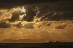 Sunrise (dave.pix2013) Tags: redcar huntcliff beacon sunrise