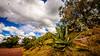 La prueba de que estuve en México (pepoexpress - A few million thanks!) Tags: nikon nikond600 nikond60024120mmf4 d610 d61024120mmf4 nikond610 d600 pepoexpress landscape méxico teotihuacan clouds desert airelibre sky