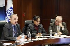 2017-01-30 y 31 Reunión Plenaria y C.P. GPPAN (8)