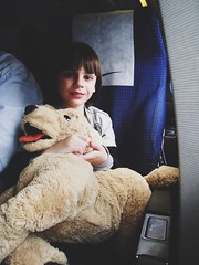Traveling Home For The Holidays Teddy Bear Stuffed Toy Childhood Children Only Travel Child Indoors  One Person Vehicle Interior Portrait One Girl Only Vehicle Seat People Day מייגיא מייטיסה (dinalfs) Tags: travelinghomefortheholidays teddybear stuffedtoy childhood childrenonly travel child indoors oneperson vehicleinterior portrait onegirlonly vehicleseat people day מייגיא מייטיסה