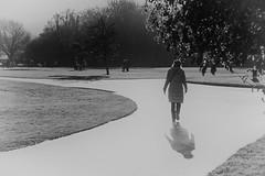 ... a walk in the park ... (jane64pics) Tags: week1 dogwood52 dogwood2017 dogwood52week1 ruleofthirds storytelling awalkinthepark janefriel janefriel2017 bw shadowsandlight 50mm
