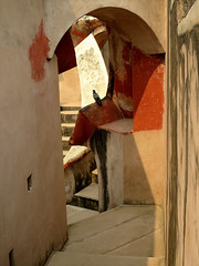 Pigeon Hole (Mary Faith.) Tags: india jantar mantar delhi astronomical instrument monument stone pigeon bird abstract shapes steps angles hole