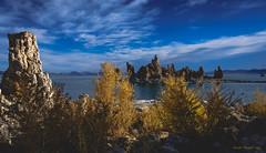Mono Morning #2 (scottshooter) Tags: 2016 easternsierras landscape landscapephotography