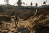 Paradise Beach, Maharashtra, India (cat_collector) Tags: india maharashtra dogs beach canon60d canonefs1585mmf3556isusm