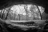 Fisheye Fun (jlstein339) Tags: sony a7ii canon fd 15mm fisheye mirrorless adapted legacy manual distortion outdoors blackandwhite monochrome cave ravenrock nc hiking landscape rocks trees sky