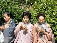#Tokyo #Japan Dos flores maduras en primavera (soros004) Tags: japan tokyo women mature maturewomen eating kimono traditional mujeresmaduras comiendo tradicional streetphotography tokyoinside friendship amistad outdoors faces friends amigas community comunidad sharing compartir