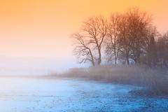 I fell in love with dreaming (yarin.asanth) Tags: stimmung ruhe liebe verlieben träumen traum kälte kalt regenwetter regen schneefall iznang höri hornstaad horn langzeitbelichtung polfilter verlaufsfilter filter farbe februar winter gerdkozik yarinasanth deutschland süddeutschland bodensee see nebel ried himmel schnee strand ufer atmosphere constance lake orange blue