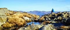 PIKE O' BLISCO, LAKE DISTRICT (pajacksonartist) Tags: pike blisco lake district national park cumbria walker hike hiker hiking mountain mountains mountainside stunning beautiful