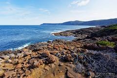 20150906-62-Rocky coastline (Roger T Wong) Tags: rocky australia tasmania foreshore 2015 tasmanpeninsula sony1635 rogertwong sel1635z sonya7ii sonyilce7m2 sonyalpha7ii sonyfe1635mmf4zaosscarlzeissvariotessart