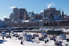Wintery Montreal (NykO18) Tags: people plants snow canada haven building tree ice church monument pinetree skyscraper docks person harbor cabin flora montral crane montreal faith religion hut qubec wharf cupola dome workspace manmade northamerica housing shack oldmontreal qc antenna offices vieuxmontral vieuxportdemontral oldportofmontreal marchbonsecours bonsecoursmarket downtownmontreal naturalelement centrevilledemontral