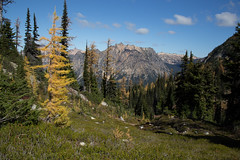 20151003-IMG_9873 (Ken Poore) Tags: washington hiking cascades larches northcascades geolocation maplepassloop geocity camera:make=canon exif:make=canon goldenlarches geocountry geostate exif:lens=ef24105mmf4lisusm exif:focallength=32mm exif:aperture=ƒ80 exif:model=canoneos6d camera:model=canoneos6d exif:isospeed=100 geo:lat=48508265 geo:lon=12076528