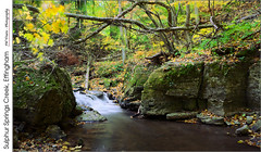 Sulphur Springs Creek, Effingham (jwvraets) Tags: autumn fall leaves creek forest waterfall nikon stream gimp niagara rapids ravine stcatharines opensource effingham niagaraescarpment fallcolour shorthillsprovincialpark d7100 rawtherapee nikkor18105mmvr sulphurspringscreek