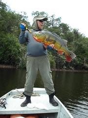 Amazonia 2012 (17)