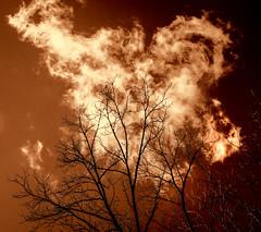 The Thinning Veil (Podsville) Tags: autumn fall halloween us october unitedstates michigan samhain meridiantownship harrisnaturecenter meridianchartertownship