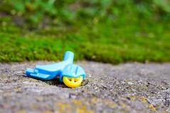 _DSC6867.jpg (peter.bielack) Tags: murek kolor trawa niebieskie faktura zabawka te podnogami