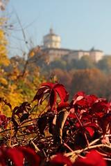 Autunno (mauvi_63) Tags: torino po autunno cappuccini