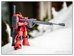 On guard duty (Puffer Photography) Tags: stilllife anime nature toys utah model manga actionfigures gundam zaku bandai bountiful 2015 redcomet zeon