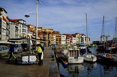 _DSC1329 (andoni.guridi) Tags: december bizkaia euskadi basquecountry diciembre paisvasco lekeitio basquecoast 2015 costavasca leaartibai