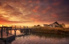 Dawn Reserve (Captain Nikon) Tags: attenboroughnaturereserve attenborough nottinghamshire village naturereserve visitorscentre bridge dawn sunrise winter nikond7000 sigma1020mmf4 srb06graduatedneutraldensityfilter explore explored