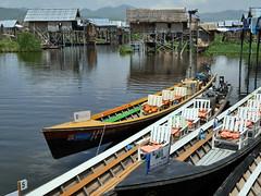 Tour Boats (Argentem) Tags: tourboats lakeinle myanmar canoes tourism