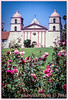 Old Mission Santa Barbara (ctofcsco) Tags: blue ca california canon canoscan canoscan9000fmarkii colorslidefilm eos eos620 explore film flowers geo:lat=3443819971 geo:lon=11971275802 geotagged green mission missioncanyon pink portrait roses santabarbara scannedimage slidefilm telephoto unitedstates usa white outdoor plant flower flowerbed
