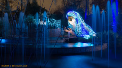 Atlanta, GA: Atlanta Botanical Garden Garden Lights (Christmas) Exhibit (nabobswims) Tags: atlanta botanicalgarden christmaslights georgia lightroom nabob nabobswims sonya6000 us unitedstates sel18105g