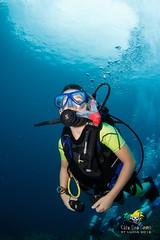 slu_bradh_V55A6083536 (kaufmankronicle) Tags: 2016 diving kidsseacamp stlucia