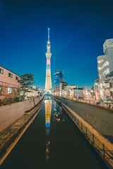 TOKYO SKYTREE_東京スカイツリー_6 (hans-johnson) Tags: tokyo sakura spring skytree tokyoskytree sky tree blue white sumida sumidaku landmark kanto japan 東京 スカイツリー 東京スカイツリー スカイ ツリー 白 墨田 墨田区 ランドマーク テレビ タワー tower 関東 関東地方 日本 アジア travel asia 建築物 塔 摩天大廈 建築 簡約主義 天際線 隅田川 sumidagawa 16mm 城市 red flower plant nature 600m skyscraper building canon eos 5d 5d3 vsco architecture skyline 1635mm night light lightroom metro metropolitan metropolis reflection mirror water river city urban