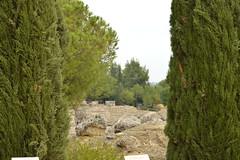 DSC_4137 (tesseracultural) Tags: italica santiponce sevilla romano roman spain andalucia españa tessera