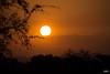 Kruger National Park (JaviJ.com) Tags: puesta de sol sunset kruger national park parque nacional safari africa sudafrica south sun atardecer