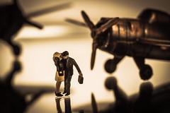 TOP GUN TRIBUTE   Macro Mondays : SONG January 9 2017    IMG_8536 (photo.bymau) Tags: bymau canon macro 7d studio proxy aurcraft plane airport warbird top gun topgun lovers amoureux boy girl mondays song inspiredbyasong