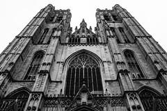 Cathédrale des Sts Michel et Gudule (Eero Capita) Tags: cathédrale saint michel gudule nikon d7100 dx 1020 sigma bruxelles brussels brussel
