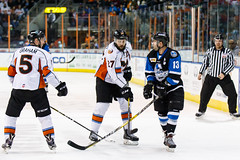 "Missouri Mavericks vs. Wichita Thunder, January 7, 2017, Silverstein Eye Centers Arena, Independence, Missouri.  Photo: John Howe / Howe Creative Photography • <a style=""font-size:0.8em;"" href=""http://www.flickr.com/photos/134016632@N02/32129251101/"" target=""_blank"">View on Flickr</a>"