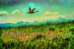 Cascades Mountain Scene (Rusty Russ) Tags: cascade mountains washington state flying bird style sky green colorful day streetart digital graffiti europe mer lago window flickr country landschaft mare analog bright happy la paysage colour eos scenic america cielo market hill world sunset beach water flower red nature blue night white tree art light sun cloud park landscape summer city yellow people pink house old new photoshop google bing yahoo stumbleupon getty national geographic magazine creative composite manipulation hue image